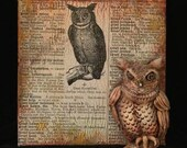 Owl Tile, Vintage Dictionary Page