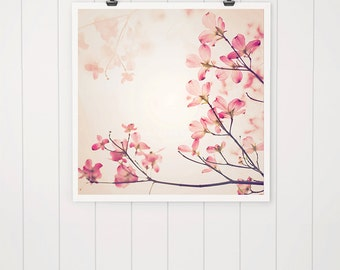 Pink Dogwood Print, dogwood, flower, dogwood tree, fine art photography, nature print, pink flower print, pink nursery decor, dogwood tree,