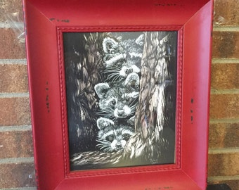 Raccoon baby artwork, three raccoons, scratchboard - artist print