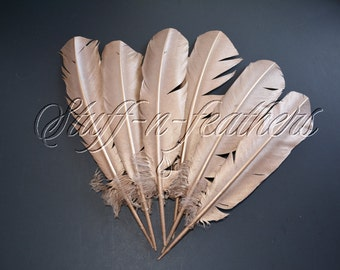 COPPER / ROSE GOLD feathers, metallic painted large turkey feathers for millinery wedding party decor / 10-14 in (25-35 cm) long / F187C