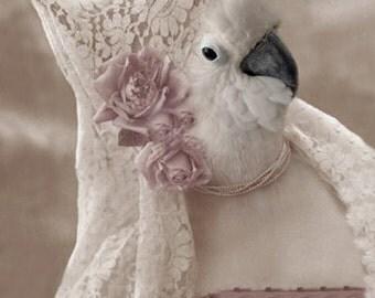 Wanda - Vintage Cockatoo Print - Anthropomorphic - Altered Photo - Gift Idea - Whimsical Art - Fantasy Art - Bird Art