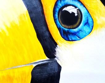 Tropical Toucan Art Print
