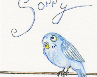 Postcard Sorry Budgie parakeet bird apology