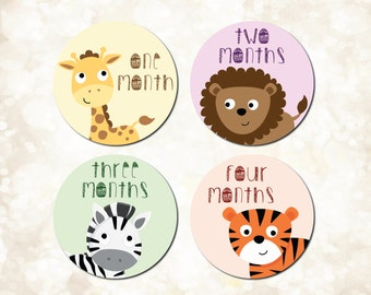 Baby Animal Monthly Stickers, Zoo Animal Monthly  Bodysuit Stickers, Milestone Stickers, Just Born, 1-3 Weeks, 1-12 Months - BS13