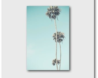 Palm Tree Photography, Retro Beach Decor, Los Angeles Surf Style Southern California Turquoise Blue Teal Aqua Serene Large Palms LA Vertical
