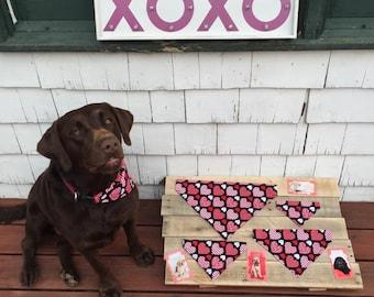 Valentine's Pet Bandana, Pet Scarf, Dog Bandana, Cat Bandana, Pet Collar