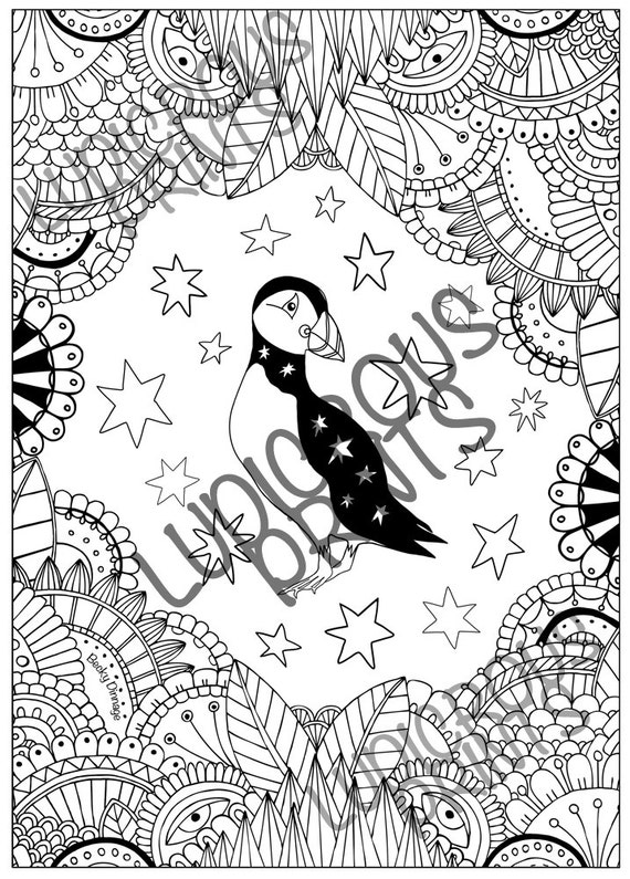 Puffin Colouring Page Coloring Sheet Doodle Illustration for