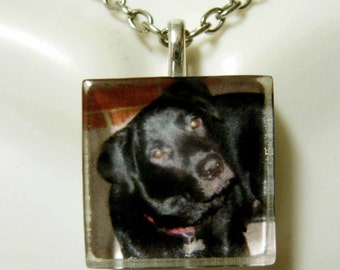 Black lab pendant and chain - DGP01-139