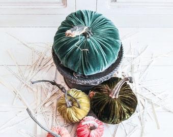 Five Blossoming Verdures Velvet Pumpkins with Real Pumpkin Stems