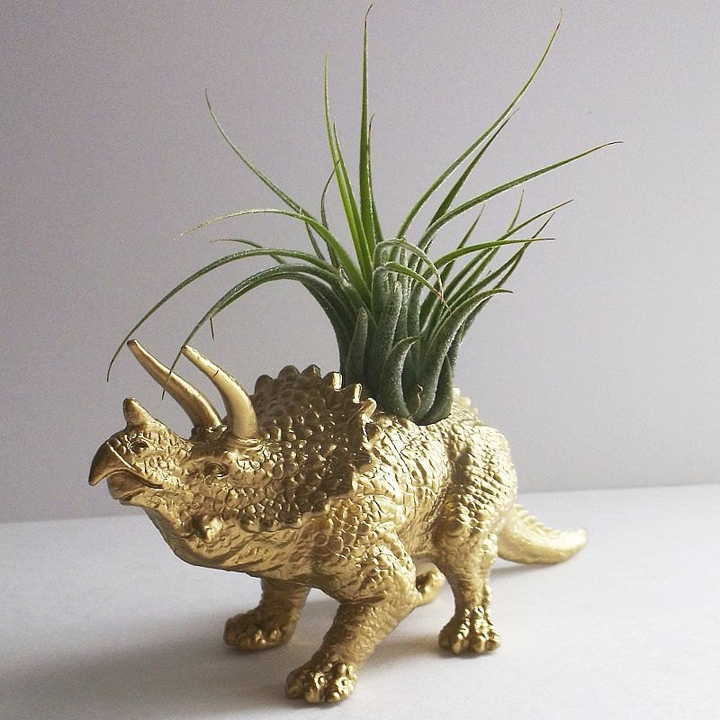 Dinosaur Planter Gold Triceratops Air Plant Animal