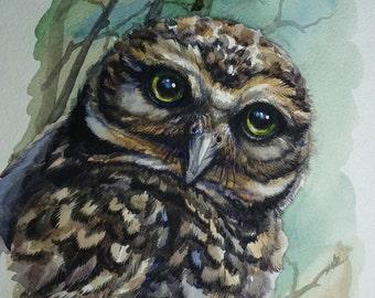 "Birds painting OWL ORIGINAL watercolour 8x12"""
