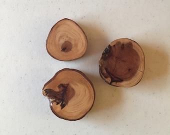 Reclaimed Redwood Magnet 3 Pack