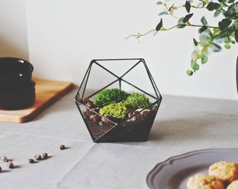 Geometric Glass Terrarium Container, Icosahedron, Glass Candle Holder, Modern Planter, Stained Glass Terrarium, Fairy Garden Centerpiece