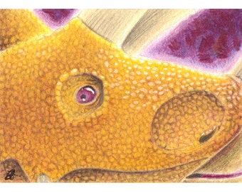 ACEO Triceratops illustration, giclee fine art print, signed by artist, open edition, atc card