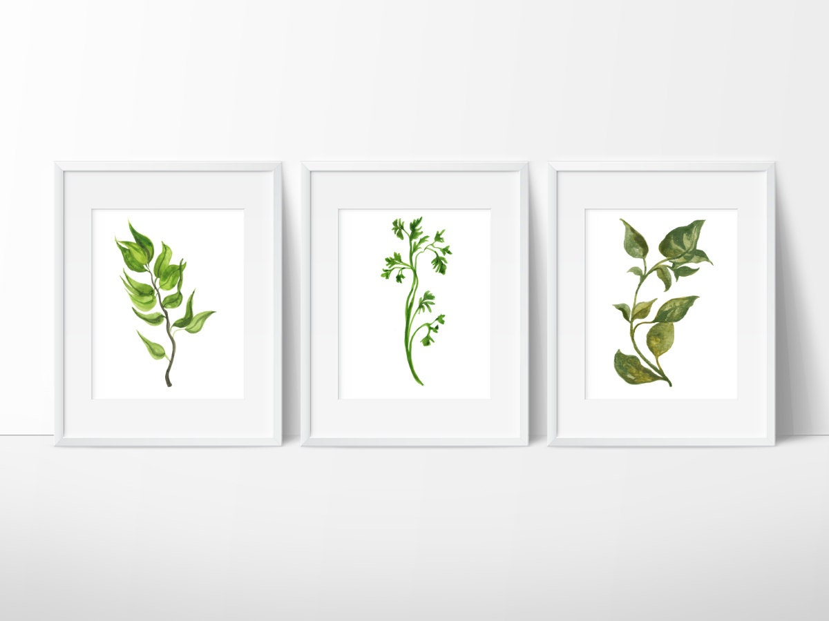 Herbs Kitchen Decor Watercolor Herbs Prints Botanical