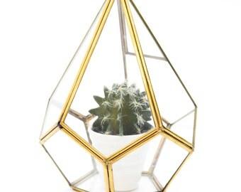 Geometric Glass Terrarium Pyramide