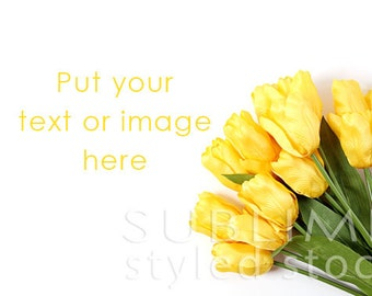 Styled Stock Photography / Spring Background / Stock Image / Flowers / Floral Background / Styled Flowers / Tulips / Easter / StockStyle-653
