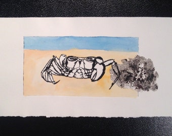 Crab etching print made from perspex plate. Entitled 'Crab with missing claw and sea spounge. Original print by Jeht Burgoyne.