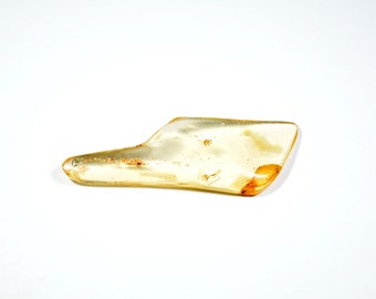 4.45g Natural Copal Amber with Insects Specimen (CopInse04)