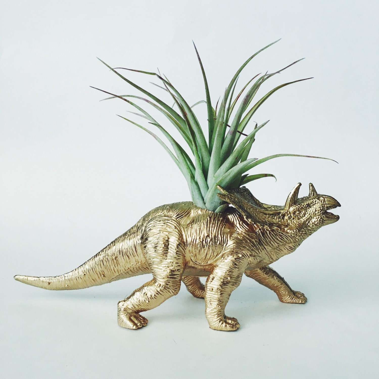 Large Gold Triceratops Dinosaur Planter Air By