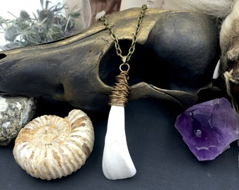 Wire Wrapped White Buffalo Tooth Pendant