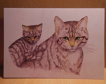 Wild Cat and Kitten Greetings Card