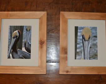 Pelicans , set of two framed prints