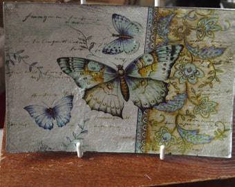 Victoria Butterfly Small Rectangle Plate