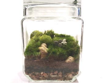 Adopt-a-Ghost // Haunted Graveyard Terrarium // Glow in the dark Ghost