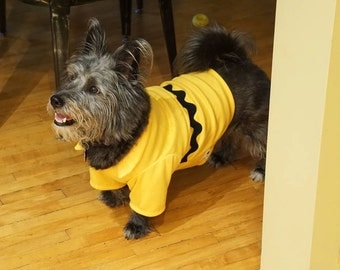 Charlie Brown Dog Costume