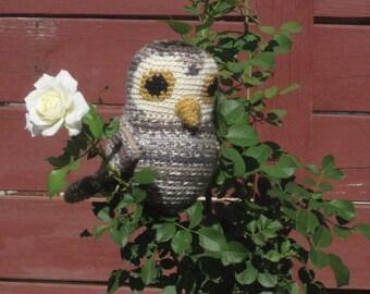 York the Owl