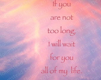 Oscar Wilde: If you are not too long, I will wait for you all of my life.