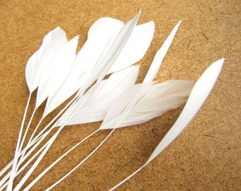 10 WHITE stripped feathers. White eyelash craft feathers 12 pcs. 12-18 cm. Weddings bridal fascinators.