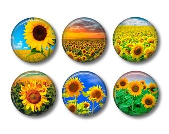 Sunflower Magnets, Fridge Magnets, Button Magnets, Kitchen Magnets, Hostess Gift, Gift For Her