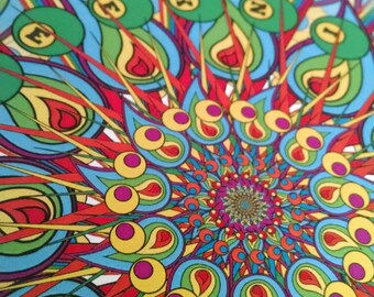 Fuego Flower - Phish - Mann 2016
