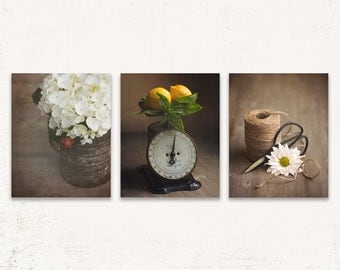 Farmhouse Kitchen Decor, Farmhouse Wall Art Set of Three, SET of THREE Prints or Canvases, Brown and White, Rustic Wall Art Set, Antique Art