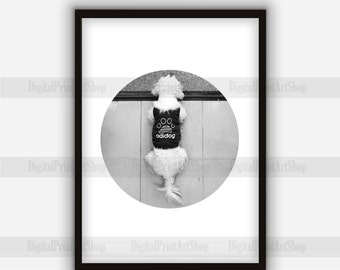 Circle print dog photography Digital wall art printable poster Black and white Art Prints Home decor, Instant Download.