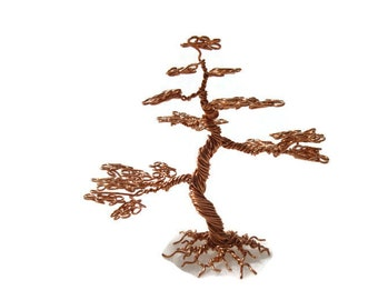Miniature Informal Upright Bonsai tree