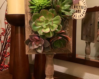 Footed Vertical Succulent Frame
