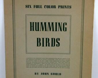 Vintage 1946 John Gould Hummingbirds Reproduction Color Art Prints H Richter Lithograph IB Fischer 6 Prints FREE SHIPPING