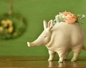 Aardvark planter