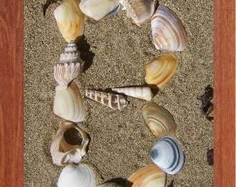 Alphabet, Shells, Printable Wall Art, Child, Beach, Spell, Summer,Inspirational, Motivational, Instant Digital Download,