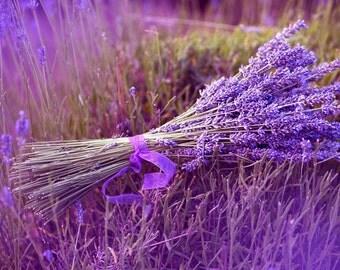 Lavender Lip Balm