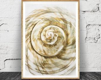 Coastal Wall Art Decor, Sea Shell Print, Printable Art, Cream Beige Neutrals Shell Decor, Beach Coastal Nautical Decor, Sea Shell Wall Art