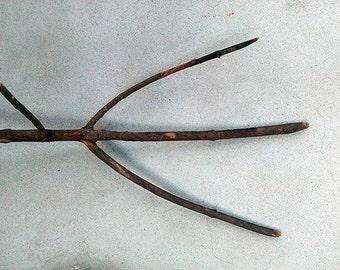 Rustic pitchfork