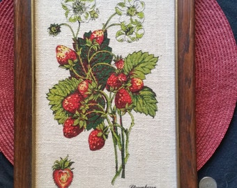 Vintage/Boho Strawberry and Cherry Framed Photos
