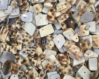 Pattern Shell Beads-Assorted Shape Shell Beads-Assorted Size Shell Beads-Shell Beads-Beads
