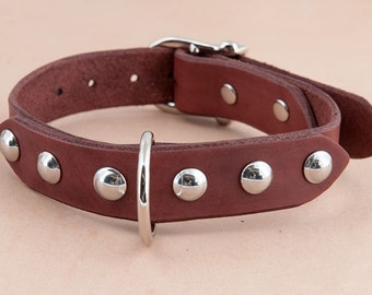 The Domed leather dog collar