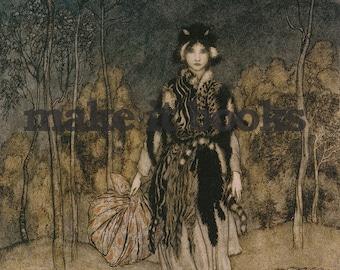 Arthur Rackham - She went along - Catskin - Brothers Grimm Fairy Tales