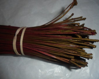301 Dyed Pine Needles Red with yellow ocre ends Pine Needle Basketry Coiling Fiber 3.85 OZ Bundle Florida Pine Basket makers Basket Supply
